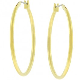 Basic Golden Hoops